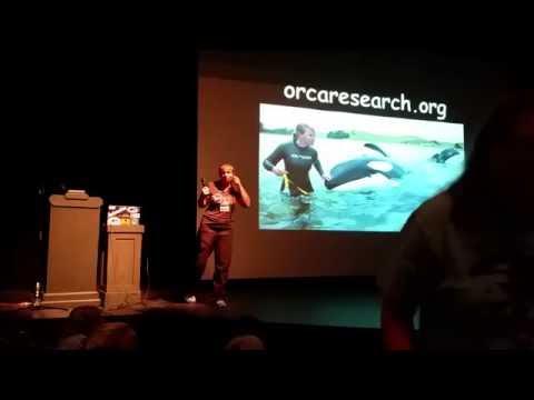 Superpod 5 - Dr. Ingrid Visser - New Zealand orca + LP Q&A