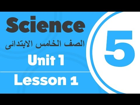Science | Grade 5 | Unit 1 Lesson 1 - Part 1 - Friction