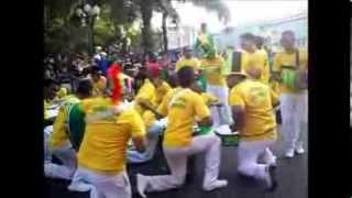 CARNAVAL DE ACARIGUA 2014 BANDAS SHOW