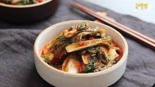 얼갈이김치 밥도둑 인정! 초보자도 실패없이 만드는 알토란 얼갈이김치 (koreanfood, Kimchi) | 금별맘 레시피