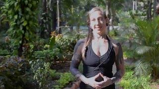 Video Ashtanga Yoga - Preparing to Press into Handstands download MP3, 3GP, MP4, WEBM, AVI, FLV Mei 2018