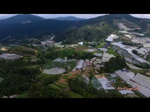 Ladang Cameron Highlands Aerial View