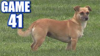 RALLY DOG   Offseason Softball Series   Game 41 thumbnail