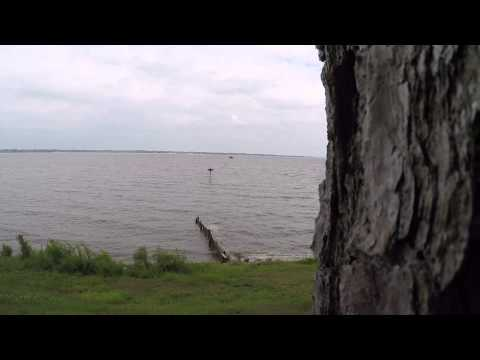 FISHHAWK VIDEO MYSTERY--I NEED HELP!