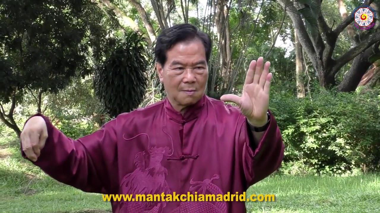 mantak chia  Tai Chi Qi Gong by Master Mantak Chia - YouTube