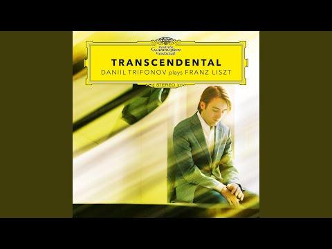 Liszt: 12 Etudes d'exécution transcendante, S.139 - No.12 Chasse neige (Andante con moto)
