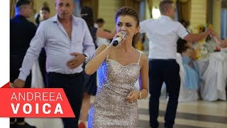 Andreea Voica - Cine n-are dor pe lume - Brauri Live (Nunta Mari & Alex)
