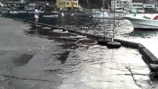 戸田の大潮満潮。