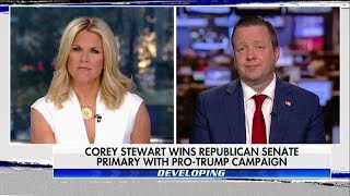 Corey Stewart on The Story with MacCallum