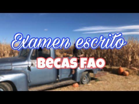 Examen Escrito Becas FAO- Consejos y como es // Aidaadb