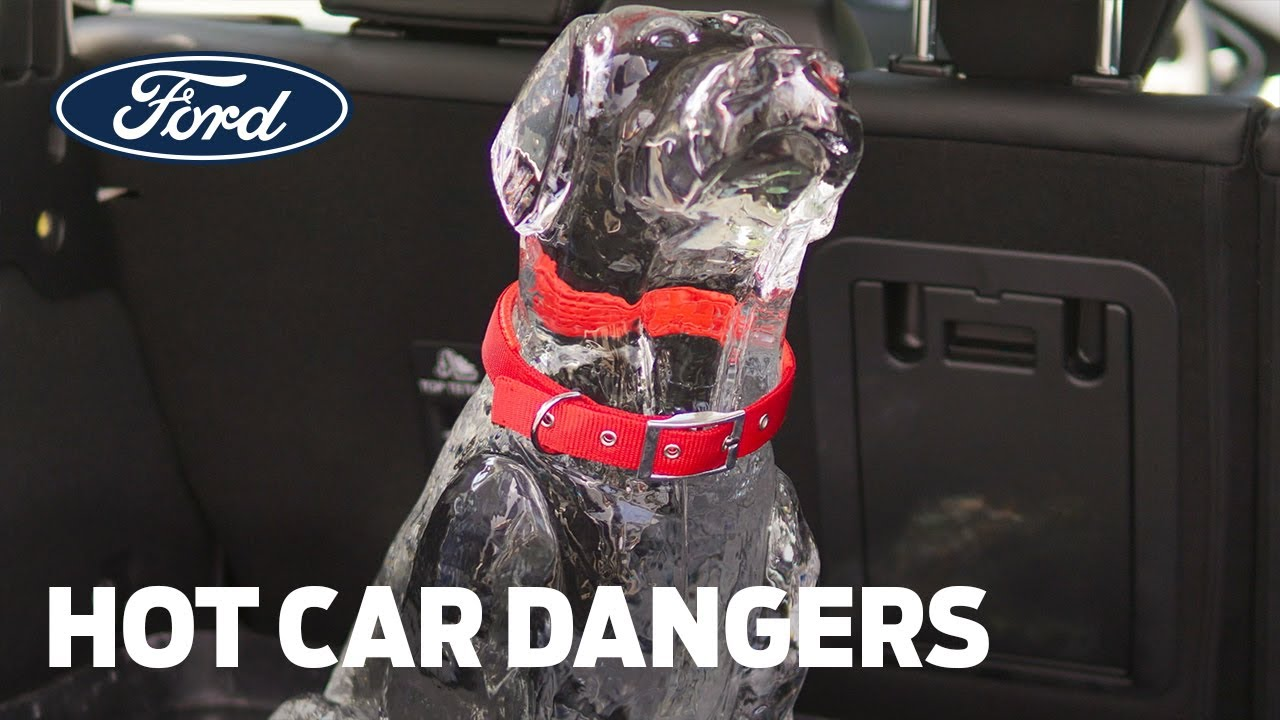 Ford Shows How Leaving Children or Pets in Hot Cars Can Lead to Tragedy