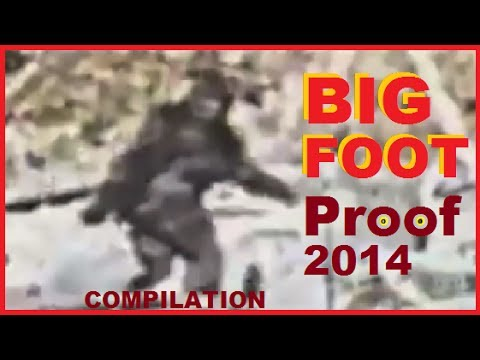 BIGFOOT Best Evidence 2014 - Sightings of Sasquatch, Yeti & Bigfoot COMPILATION