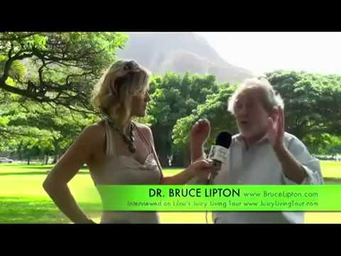 Le secret de la Physique Quantique Dr Lipton 1/2