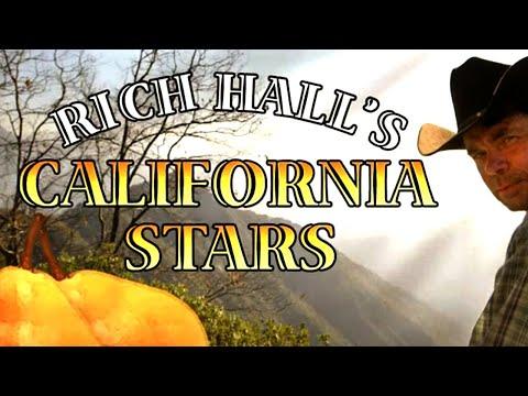 Rich Hall's California Stars (2014) HD BBC4 [English Subs]