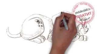 Смотреть онлайн 101 далматинец  Как правильно рисовать собаку далматинца поэтапно карандашом