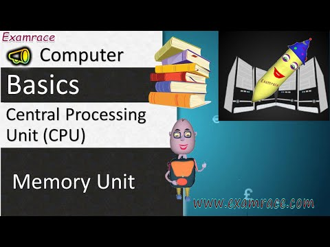 Central Processing Unit (CPU): Fundamentals of Computers