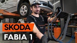Comment remplacer une сourroie poly v / courroie striée sur SKODA FABIA 1 (6Y5) [TUTORIEL AUTODOC]