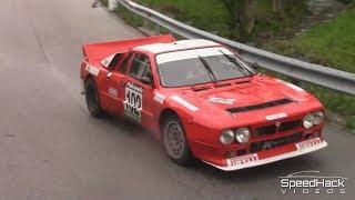 33. Rally Piancavallo 2019   Highlights