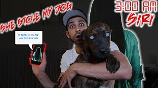 One of Ali H's most viewed videos: (SIRI TOOK MY DOG) DO NOT TALK TO SIRI AT 3:00 AM | SIRI CONTACTED ME AT 3 AM AND STOLE MY DOG