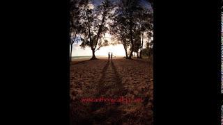 Oahu Couples Photography Hawaii Couples Photographers