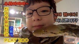 [윤건튜브][YG TV]체험 동물원 플레이주 by 도레…
