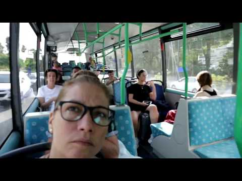 Vamos A Madrid En Metrobus//Los Papeles