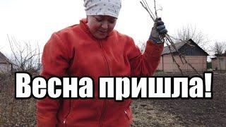 Наконец то потеплело!В деревню к Бабушке и Дедушке!Червоный Яр Донецкая область.
