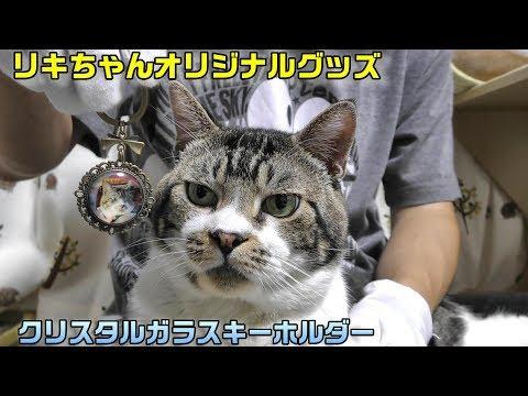 【告知】リキちゃんのキーホルダーを作ったので販売します☆限定オリジナルグッズ【リキちゃんねる 猫動画】Cat video キジトラ猫との暮らし