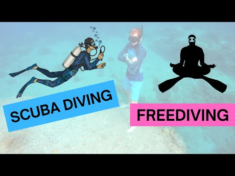 Freediving vs Scuba diving. What is more environment friendly?