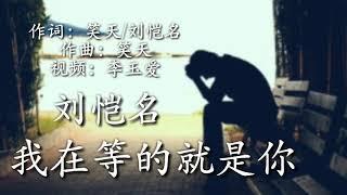 《我在等的就是你》 演唱:刘恺名