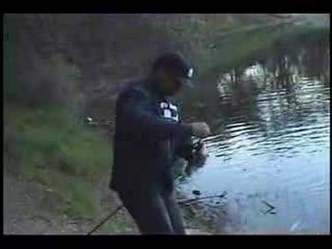 California lake amador a funny trout clip fishing with for Lake amador fishing