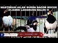 Masteran Jalak Suren Full Isian Gacor Bocor Ketekan Umar Salah Satu Koleksi Ibn Qomar Collection  Mp3 - Mp4 Download