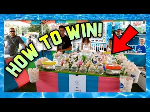 Secret Tip How To Win Carnival Games Winning Goldfish & More ArcadeJackpotPro