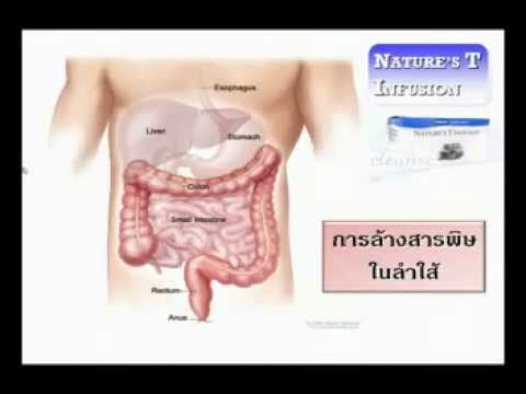 Trà Thải Độc-Tra Thai Doc Ruột Nature Tea-phòng chống ung thư.flv