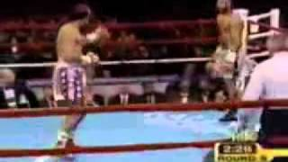 The fastest hands in boxing Roy Jones Jr