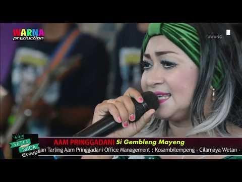 Ditinggal Wong Tua Aam Pringgadani 26 Nov 2017 Bpk Tarsim