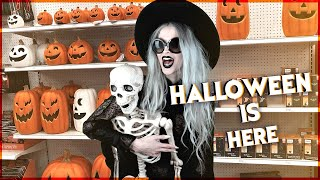 Halloween Decor Hunting!!! Target, Ross, Dollar Tree, Pier1 and more...