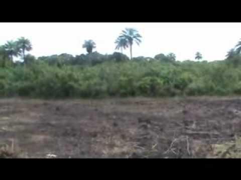 Site preview Liberia 2010.wmv