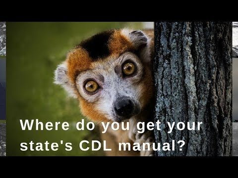 Where To Get Your State's CDL Manual