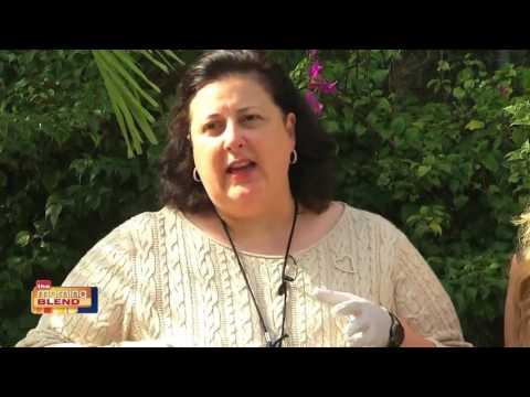 Dr. Lori - Antique Appraisals 3/15/17