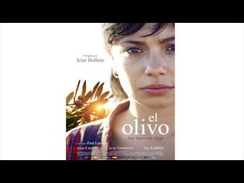 El Cine en la Enseñanza: El Olivo