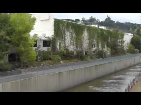 LA River: Studio City, Los Angeles, CA 11/8/12