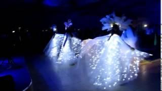 Светящиеся АНГЕЛЫ И ПТИЦЫ СЧАСТЬЯ для свадебного танца в Ростове-на-Дону и Краснодаре. 89282796705
