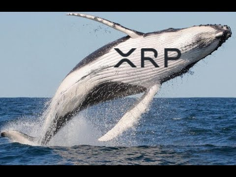 Ripple Just Signed A Stealth Whale To Use XRP