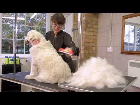 FURminator deShedding Tools for Dogs