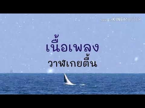 วาฬเกยตื้น - GUNGUN [เนื้อเพลง]