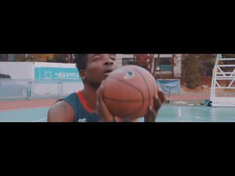 Video Stok Gratis · Pexels Videos