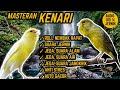 Suara Masteran Kenari Roll Nembak Rapat Jeda Terapi Air Alam Anti Stres  Mp3 - Mp4 Download