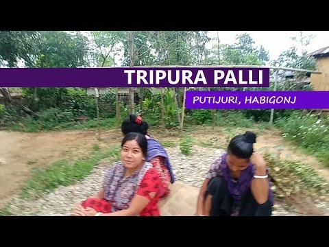 বাহুবলের ত্রিপরা জনগোষ্ঠী | TRIPURA village in Habigonj | Bangladeshi Tripuri people | Hobigonj