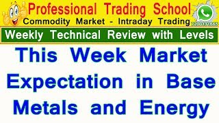 This Week How to Trade In Base Metals | Crude Oil | Nifty | Bank Nifty | Natural Gas | PTS